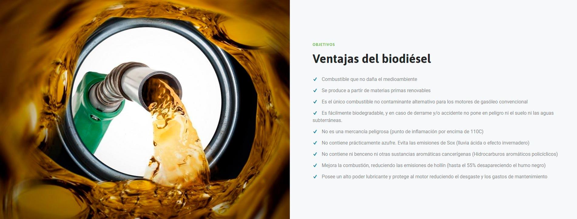 Iniciativas Bioenergéticas